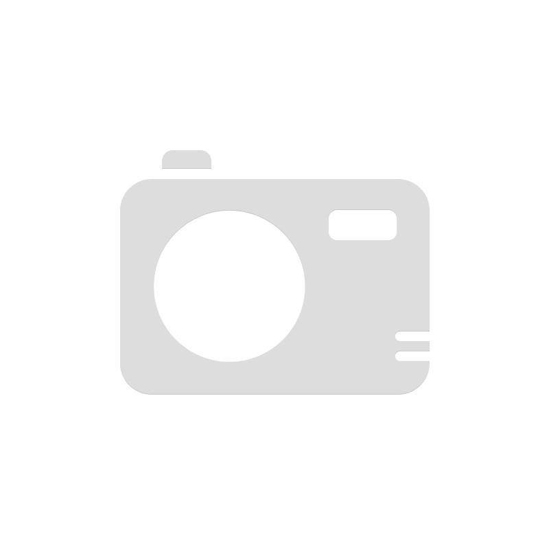 TRAPANO AVVITATORE 12 Volt MILWAUKEE M 12 BDD